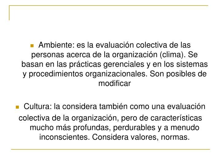 Ambiente: es la evaluación colectiva de las personas acerca de la organización (clima). Se basan en las prácticas gerenciales y en los sistemas y procedimientos organizacionales. Son posibles de modificar