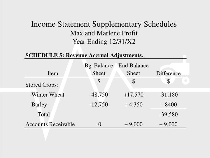 Income Statement Supplementary Schedules