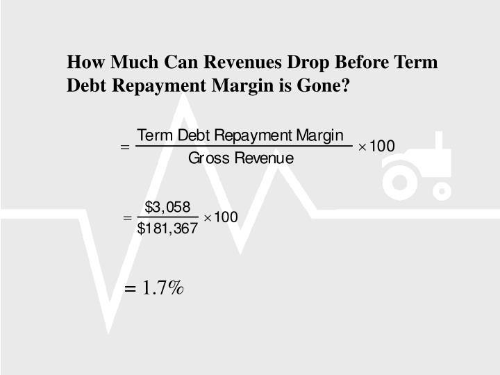 How Much Can Revenues Drop Before Term Debt Repayment Margin is Gone?