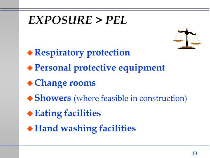EXPOSURE > PEL