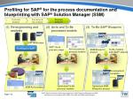 profiling for sap for the process documentation and blueprinting with sap solution manager ssm