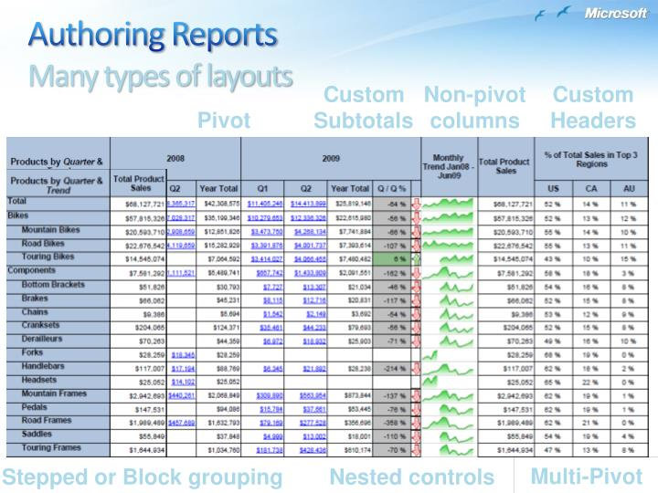 Authoring Reports