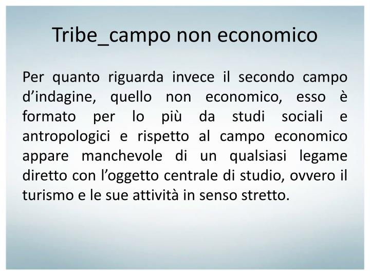 Tribe_campo non economico