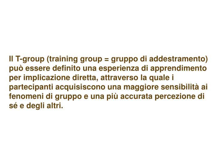 Il T-group (training group = gruppo di addestramento) può essere definito una esperienza di apprendimento per implicazione diretta, attraverso la quale i partecipanti acquisiscono una maggiore sensibilità ai fenomeni di gruppo e una più accurata percezione di sé e degli altri.