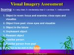 visual imagery assessment