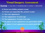 visual imagery assessment1