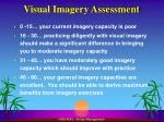 visual imagery assessment2