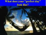 what does your perfect day look like