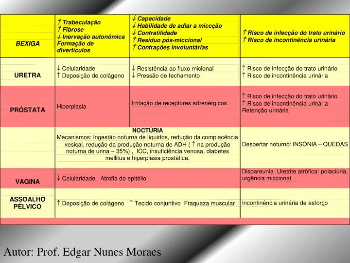 Autor: Prof. Edgar Nunes Moraes