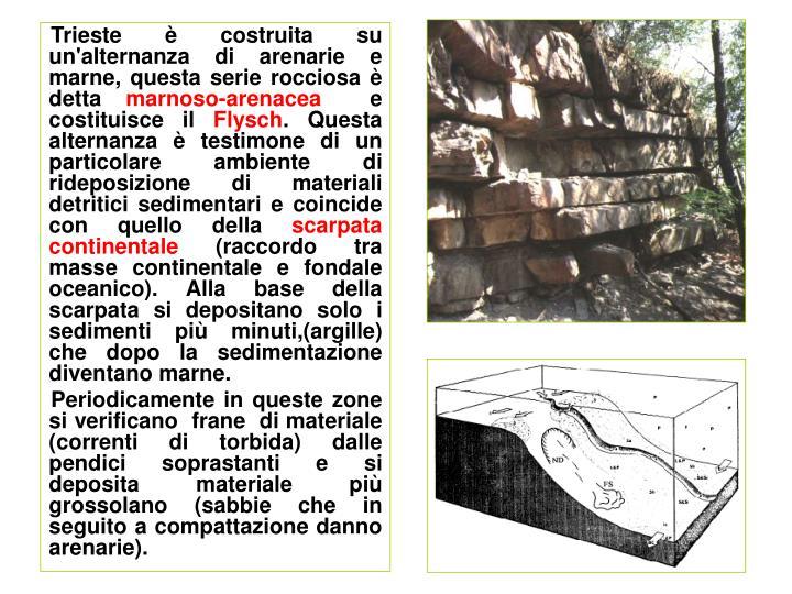 Trieste è costruita su un'alternanza di arenarie e marne, questa serie rocciosa è detta