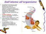 dall atomo all organismo2