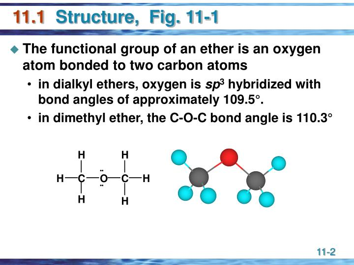 11 1 structure fig 11 1