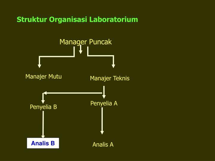 Manager Puncak