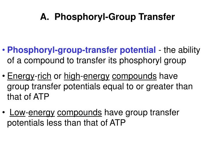 A.  Phosphoryl-Group Transfer