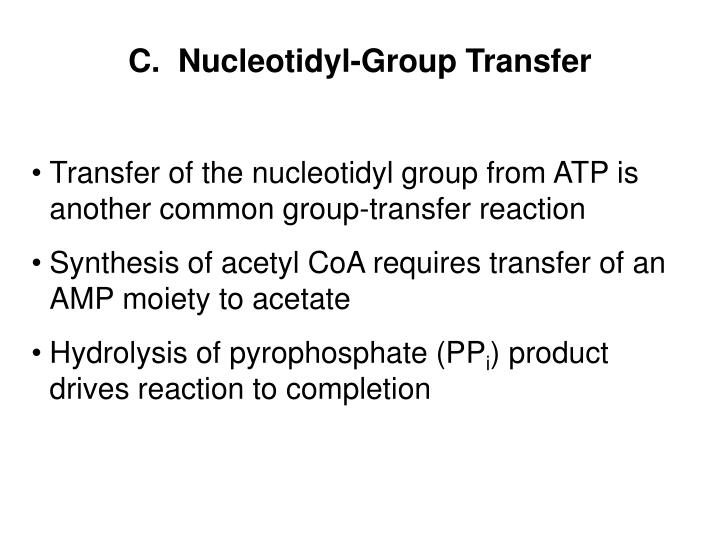 C.  Nucleotidyl-Group Transfer