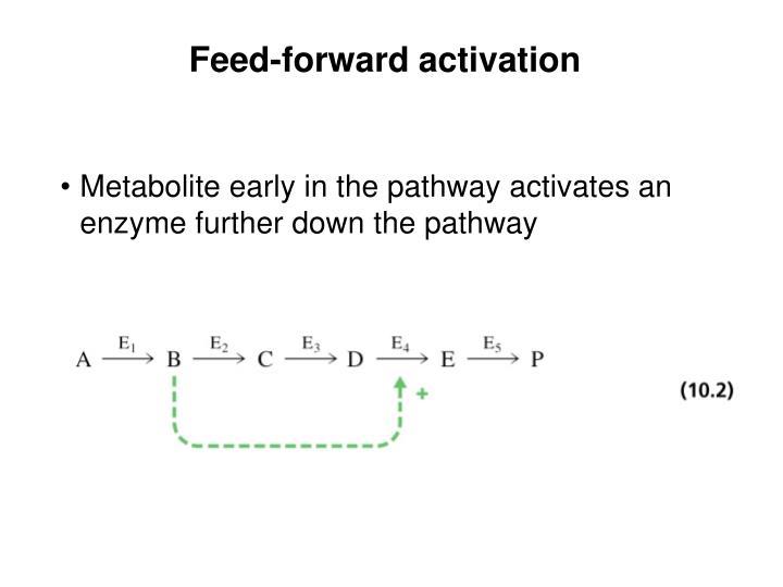 Feed-forward activation