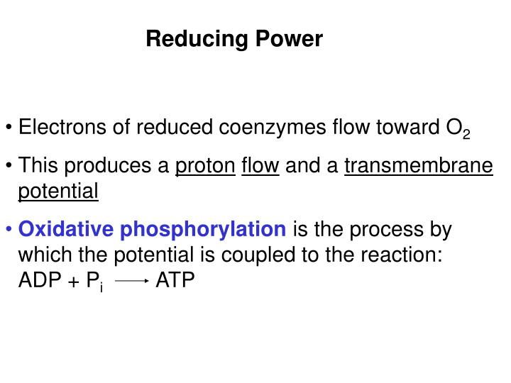 Electrons of reduced coenzymes flow toward O