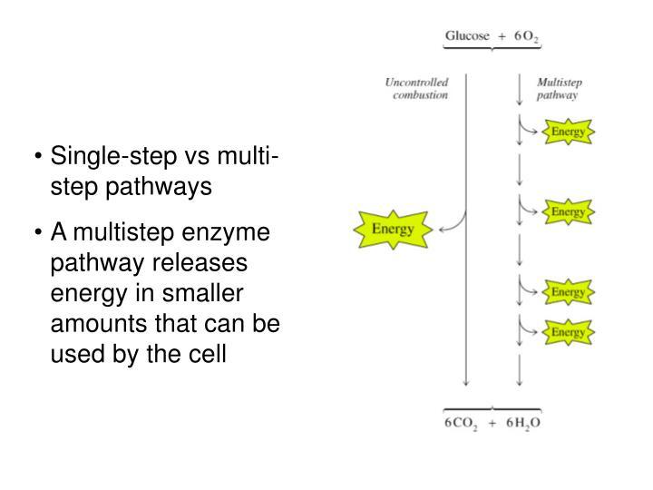 Single-step vs multi-step pathways