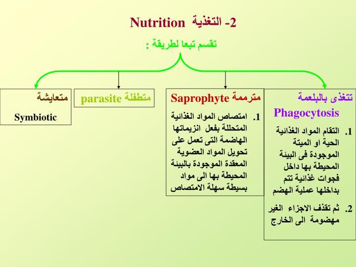 2- التغذية
