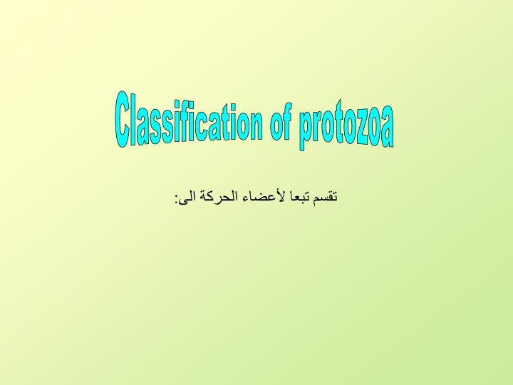 Classification of protozoa