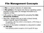 file management concepts