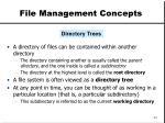 file management concepts23