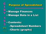purpose of spreadsheet