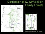 distribution of q garryana on family forests