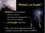 robust yet fragile