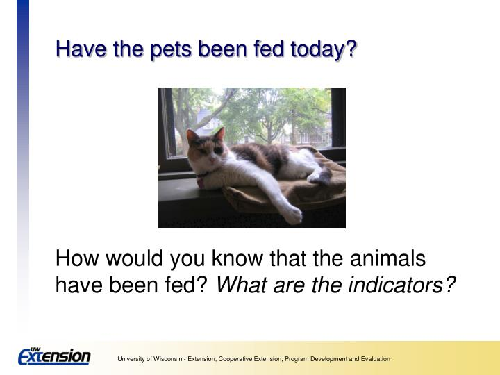 Have the pets been fed today?