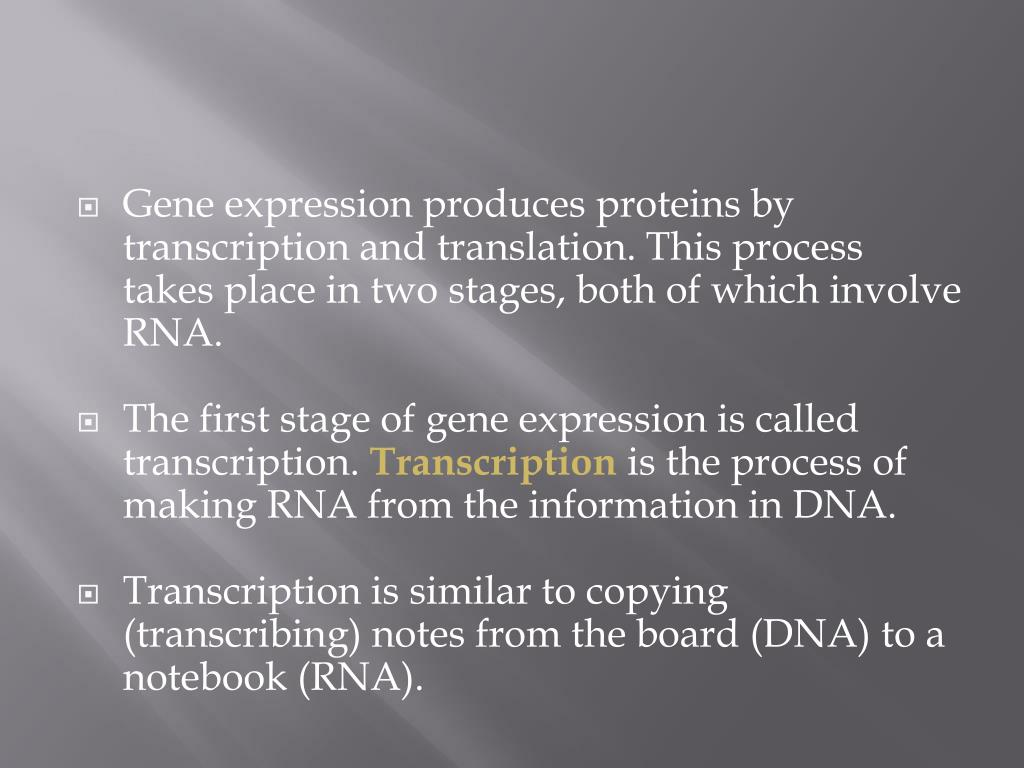 Gene expression produces proteins by transcription and translation. This process takes place in two stages, both of which involve RNA.