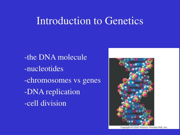 introduction to genetics n.