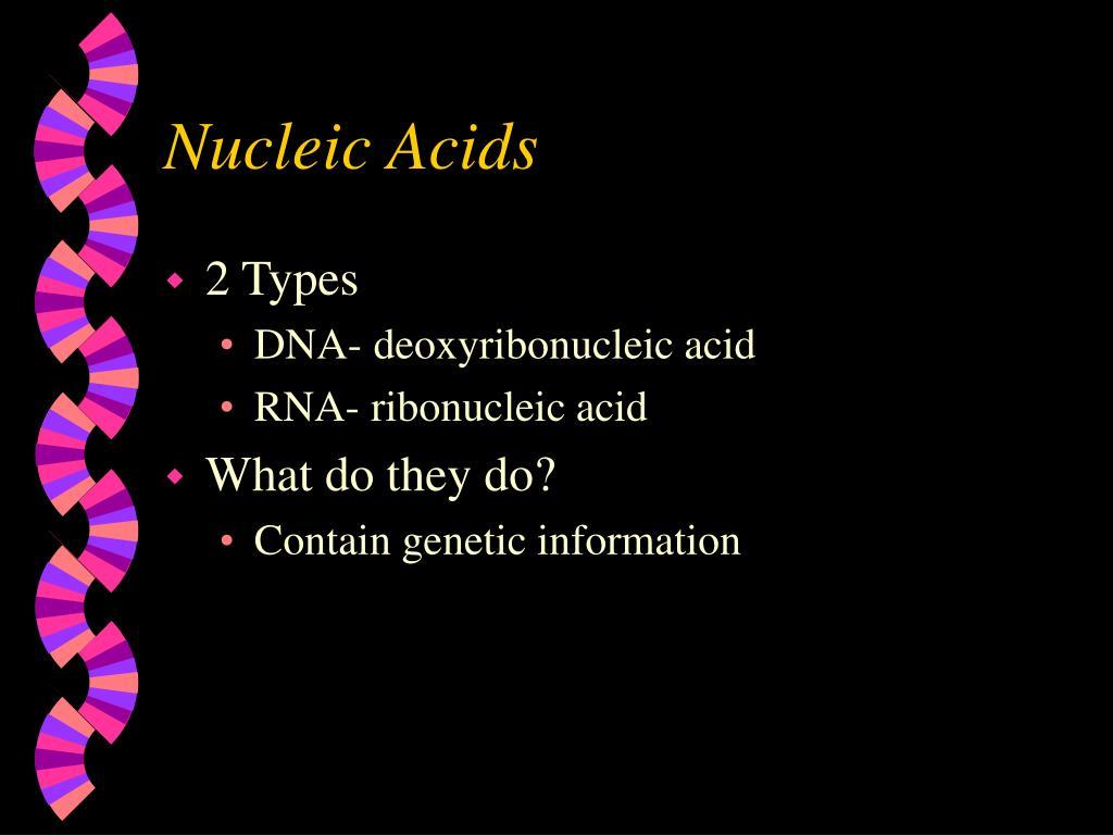 nucleic acids l.