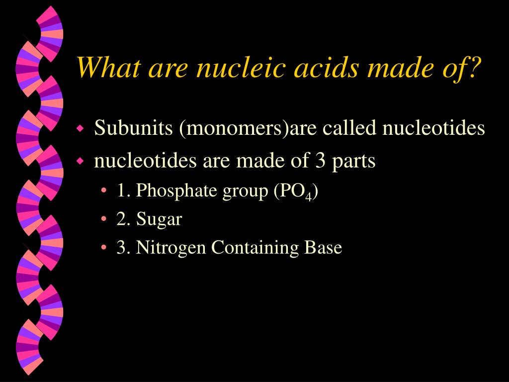 What are nucleic acids made of?