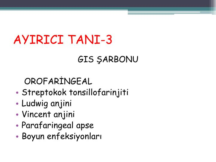 AYIRICI TANI-3