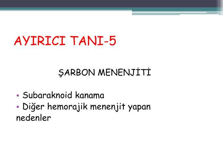 AYIRICI TANI-5