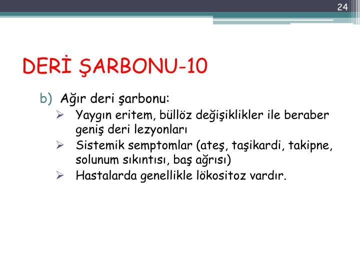 DERİ ŞARBONU-10