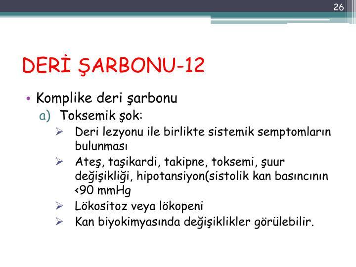 DERİ ŞARBONU-12