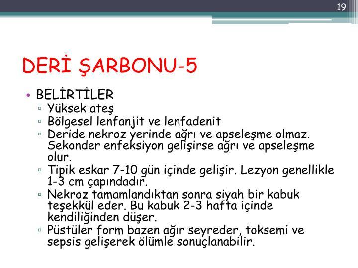 DERİ ŞARBONU-5