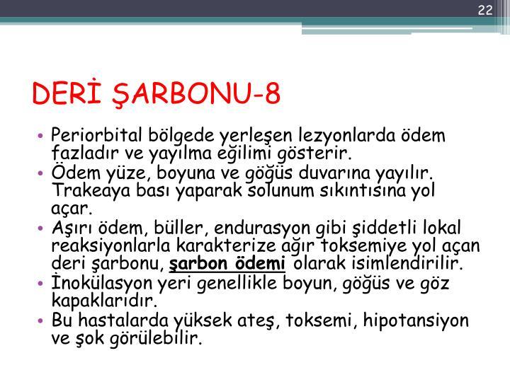 DERİ ŞARBONU-8
