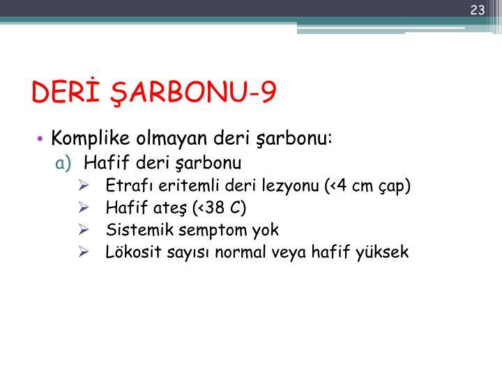 DERİ ŞARBONU-9