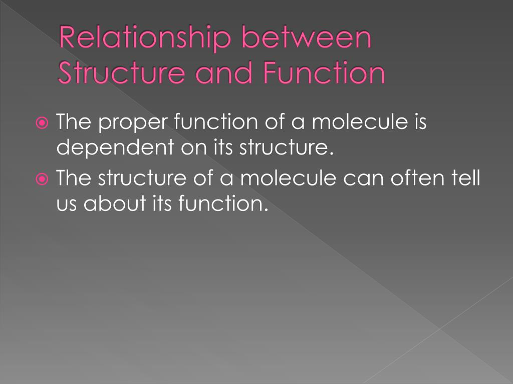 Relationship between Structure and Function