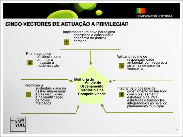 CINCO VECTORES DE ACTUAÇÃO A PRIVILEGIAR