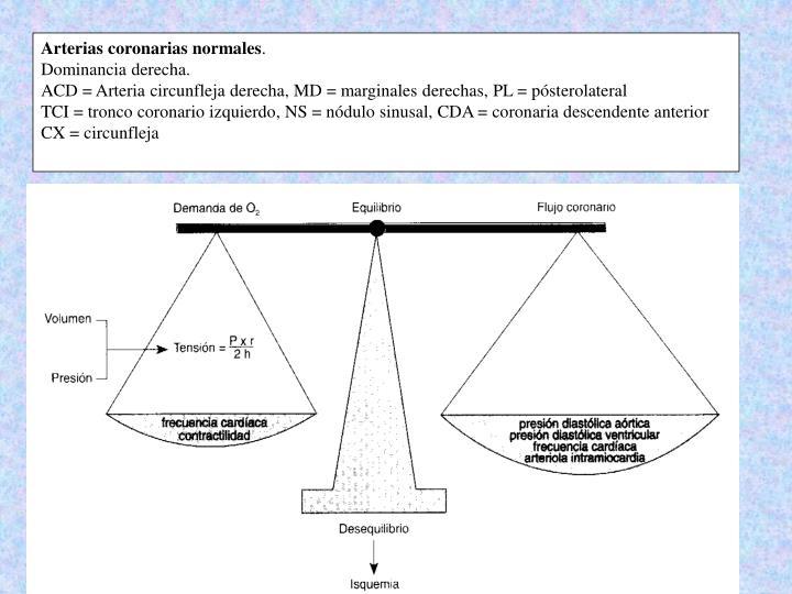 Arterias coronarias normales