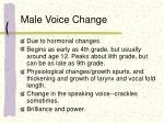 male voice change