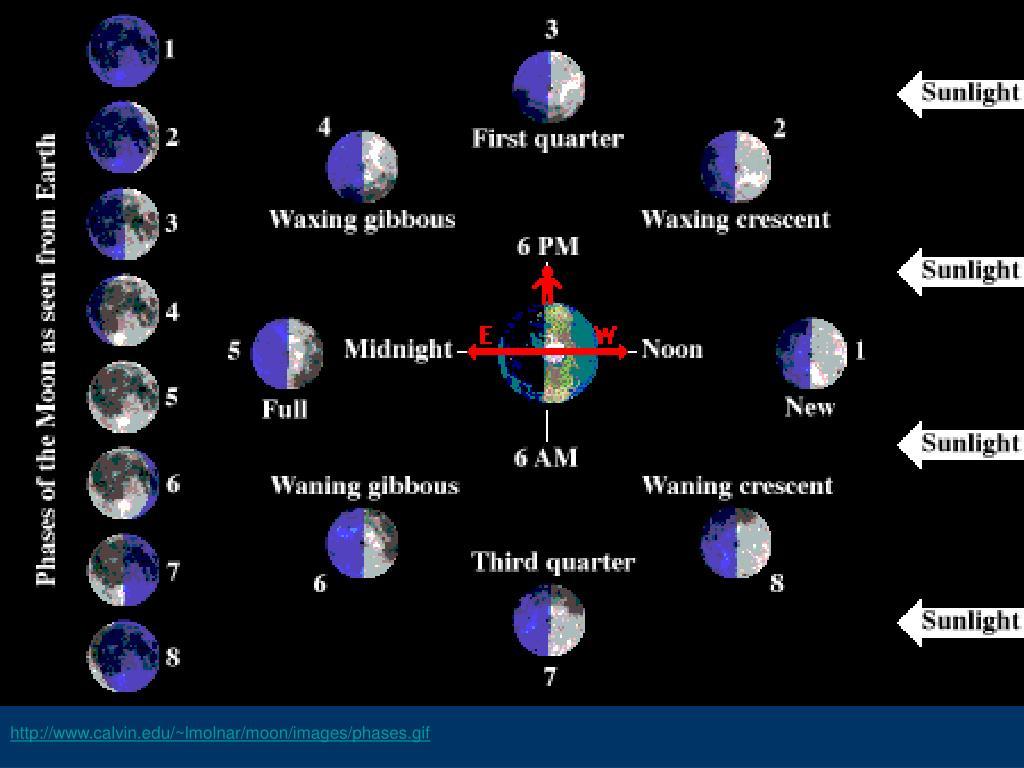 http://www.calvin.edu/~lmolnar/moon/images/phases.gif