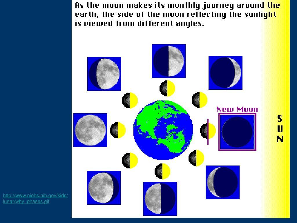 http://www.niehs.nih.gov/kids/lunar/why_phases.gif