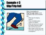 example 3 slip trip fall
