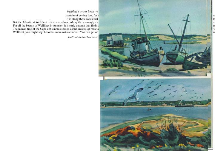 Wellfleet's oyster boats