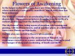 flowers of awakening